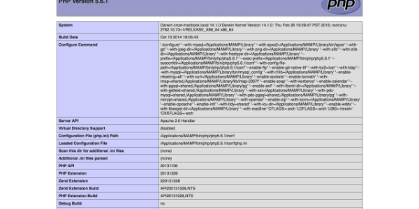 【PHP】現在の設定内容を確認する[phpinfo()]関数の使い方。