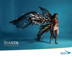 【Design】エクアドルの航空会社[tame]のプロモーションが素敵です。