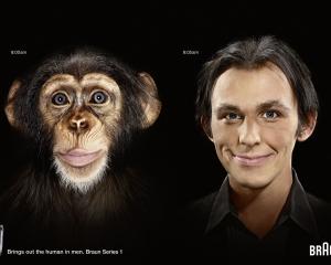 【ADS】カミソリの[BRAUN]が面白い広告を展開していました。