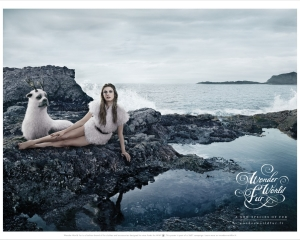 【ADS】空想上の動物を使った[Wonder World Fur]のクリエイティブな広告です。