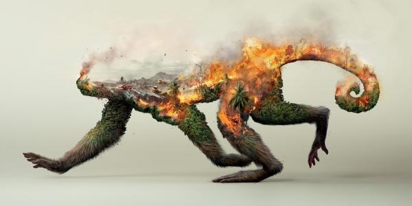 【ADS】ドイツの行動的環境団体[ロビン・ウッド]のポスター広告