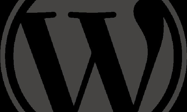 【WordPress】サブディレクトリにインストールしたWordPressをドメイン直下に表示する方法。