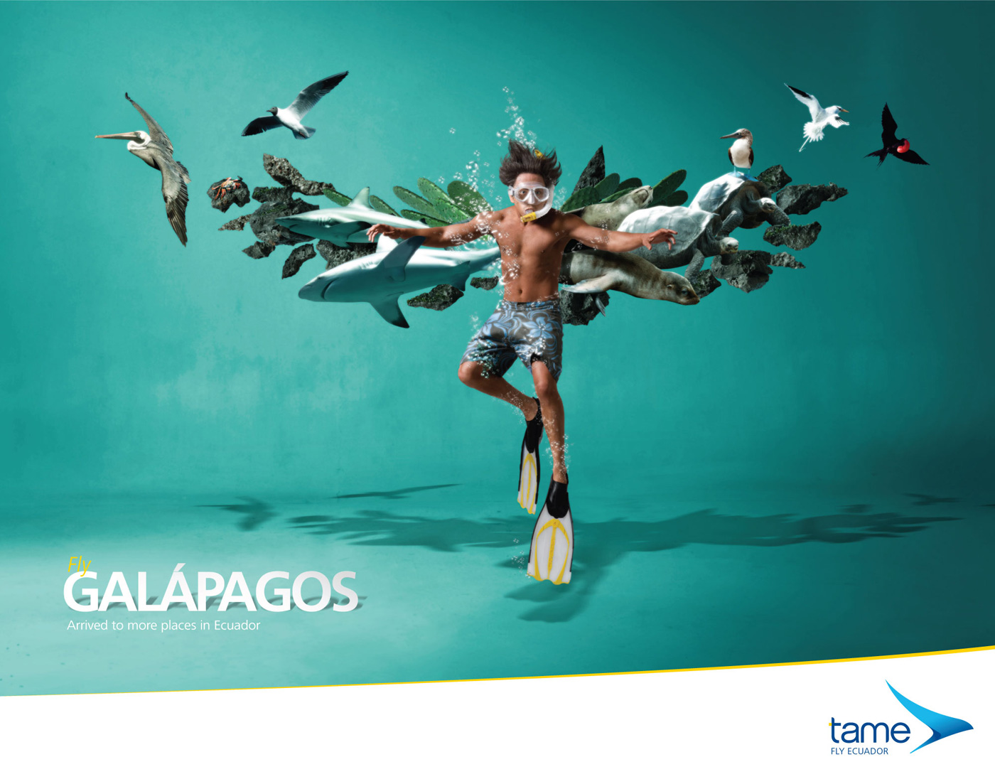 Fly GALÁPAGOS Arrived to more places in Ecuador