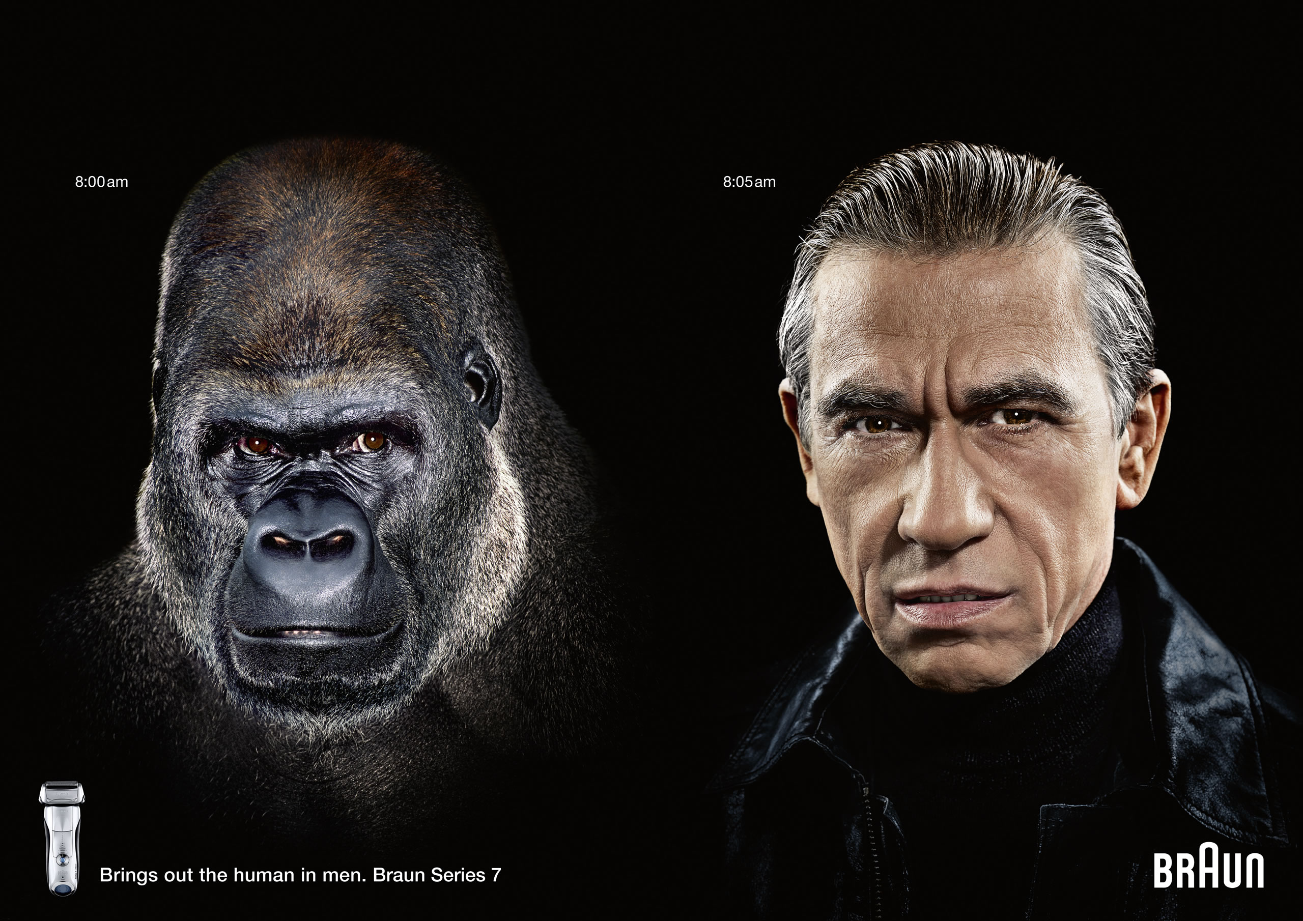 braun-gorilla