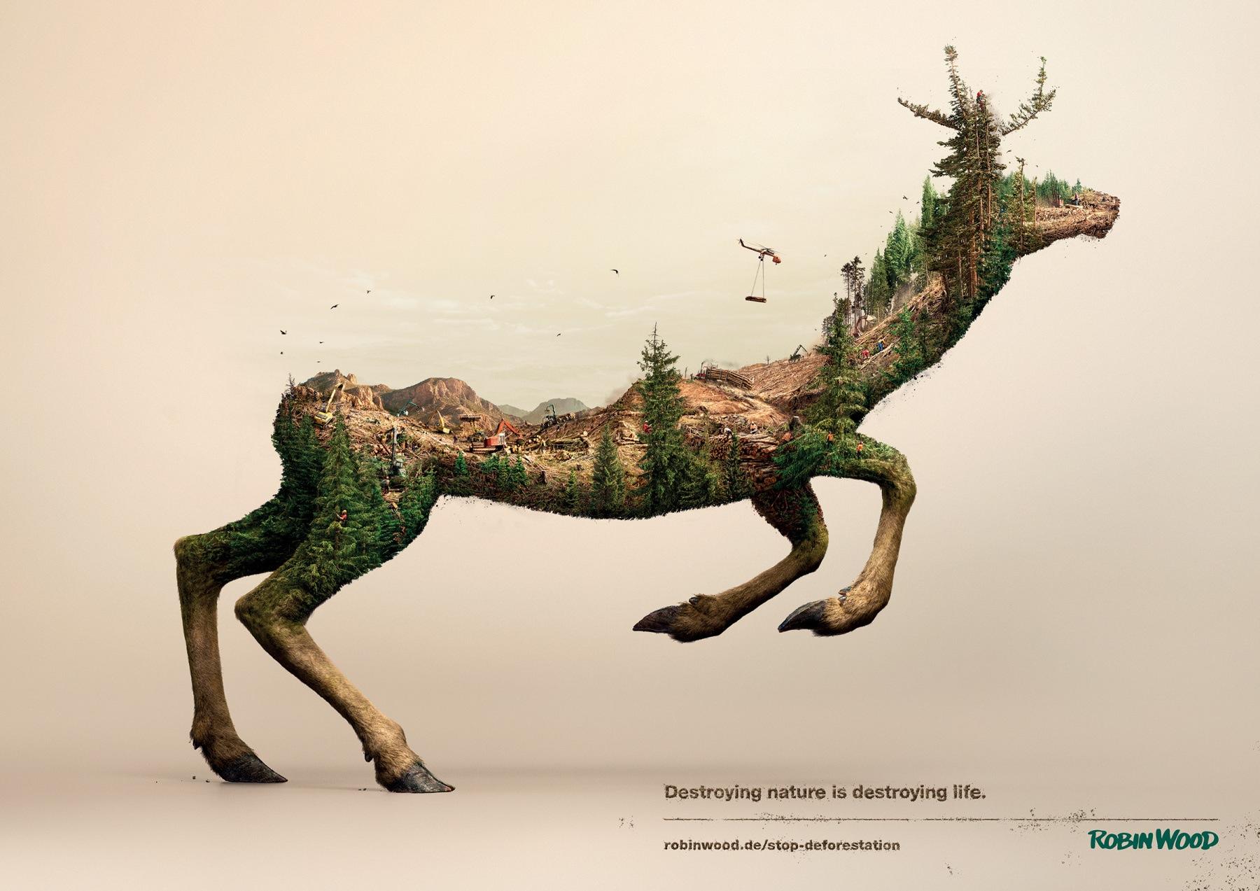 Robin Wood - 鹿